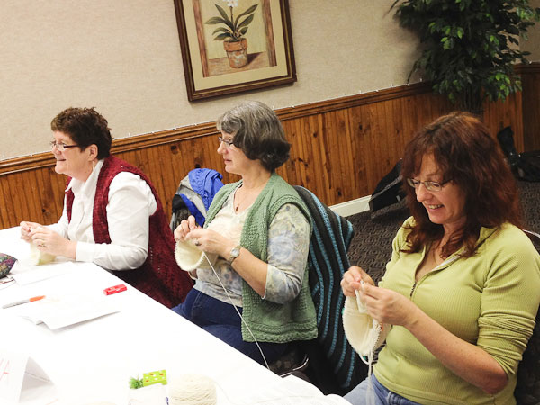 Gwen Bortner, Cambria, knitting workshop, Ball & Skein & More