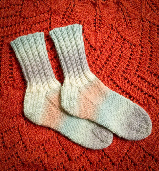 Cushy Chroma Socks 2