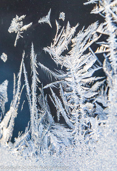 Frost_sml-25