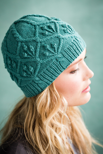 Vogue Knitting Patterns For Hats : AudKnits   cables