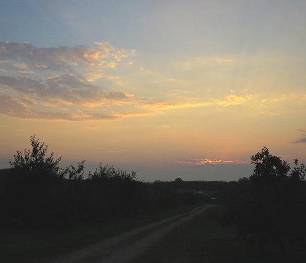 eddy-sunset_