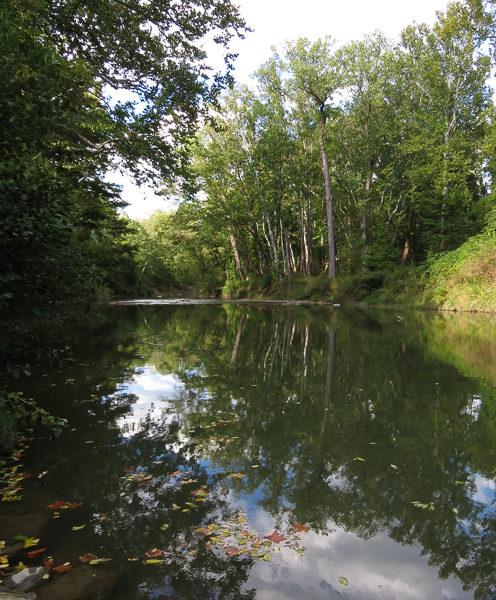 River 1 Sept 2016