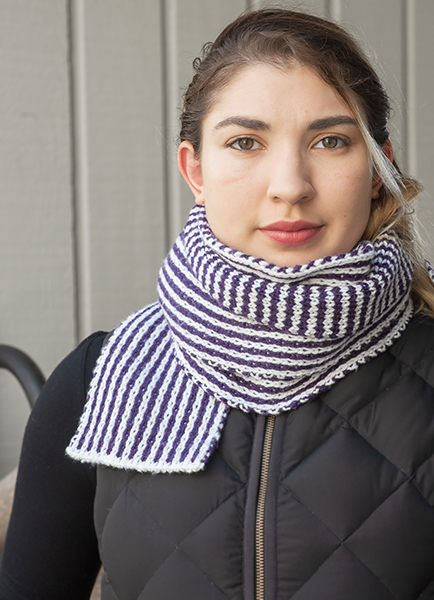 Surprise Stripes Reversible Scarf